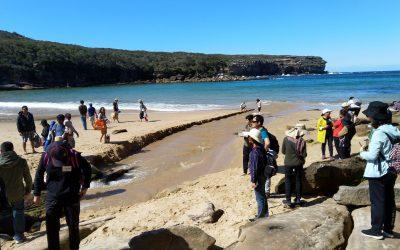 ESL Camp @ Wattamolla Beach